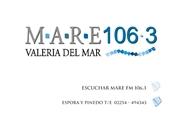diseño para radio Mare FM Cariló